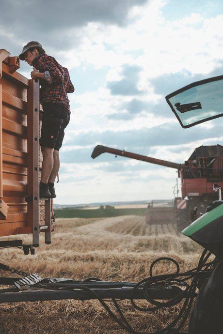 Helga Bernold | organic grains | Stronsdorf